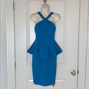 Zac by Zac Posen Dress NWT